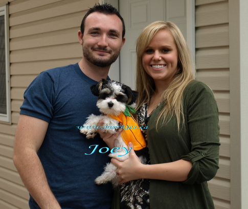 Joey with his owners Shane and Christine